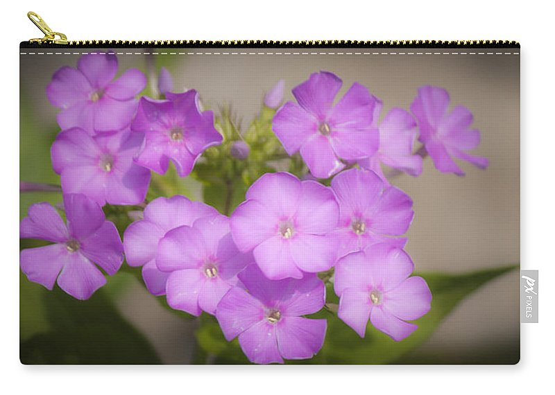 Phlox Carry-all Pouch featuring the photograph Lavender Phlox by Teresa Mucha