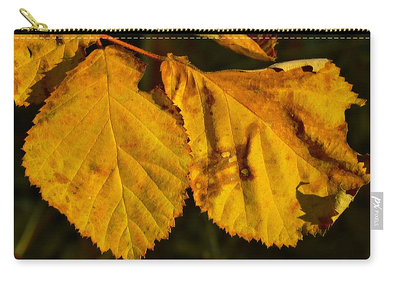 Autumn Carry-all Pouch featuring the photograph Leaf 3 by Bill Owen