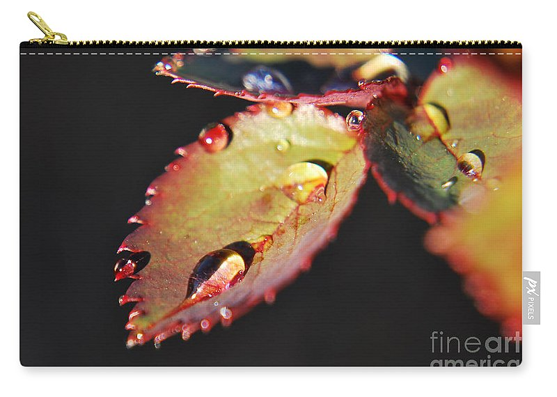 Yhun Suarez Carry-all Pouch featuring the photograph Leaf And Dew Drops by Yhun Suarez