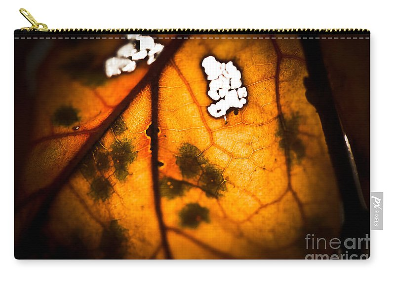 Fall Leaf Carry-all Pouch featuring the photograph Leaf Detail by Kim Henderson