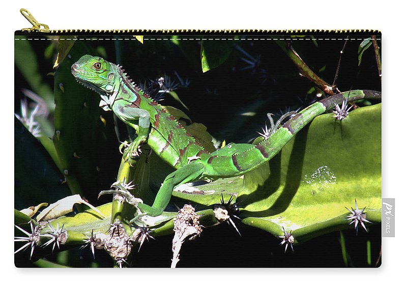 Lizards Carry-all Pouch featuring the photograph Leapin Lizards by Karen Wiles