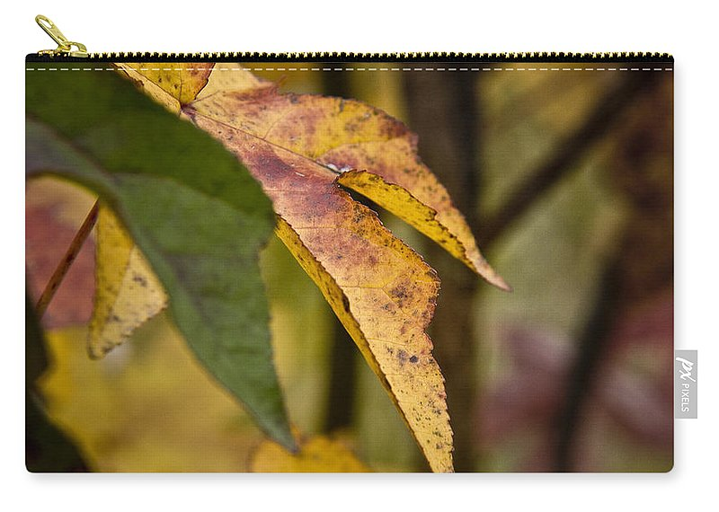 Fall Carry-all Pouch featuring the photograph Leaves Of Fall by Kacy Taylor