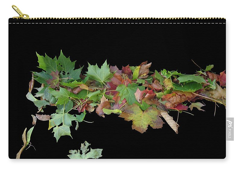 Leaves Carry-all Pouch featuring the photograph Leaves On Sidewalk by Martin Brockhaus