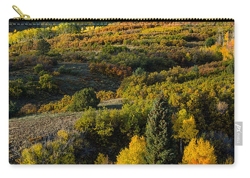 Colorado Carry-all Pouch featuring the photograph Leaves Turning At Dallas Divide by Greg Nyquist