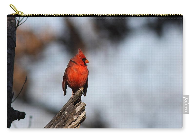 Cardinal Carry-all Pouch featuring the photograph Left Face by Travis Truelove