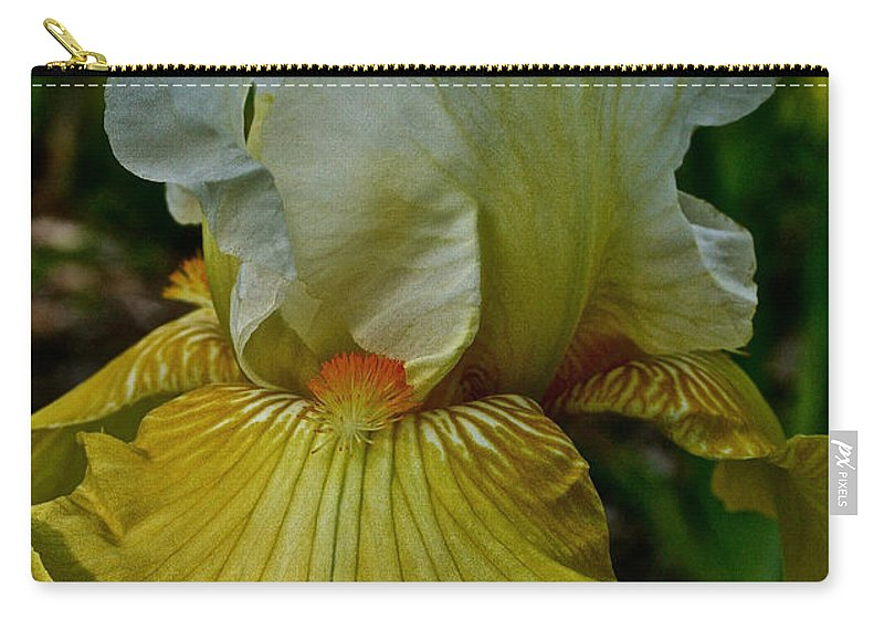 Plant Carry-all Pouch featuring the photograph Lemon Petals by Susan Herber