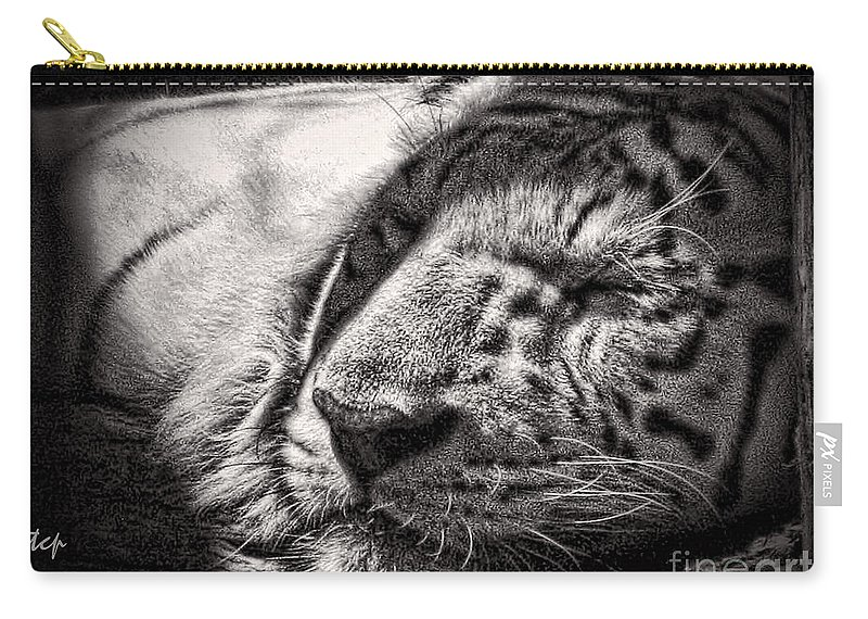 Tiger Carry-all Pouch featuring the photograph Let Sleeping Tiger Lie by Traci Cottingham