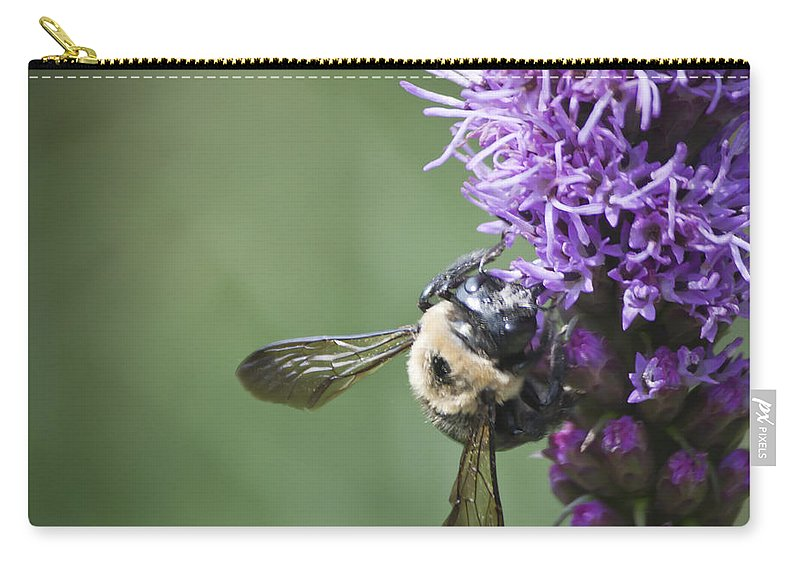 Gayfeather Carry-all Pouch featuring the photograph Liatris And Bee Squared 2 by Teresa Mucha