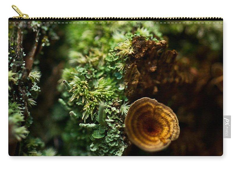 Lichen Carry-all Pouch featuring the photograph Lichen And Fungi 1 by Douglas Barnett