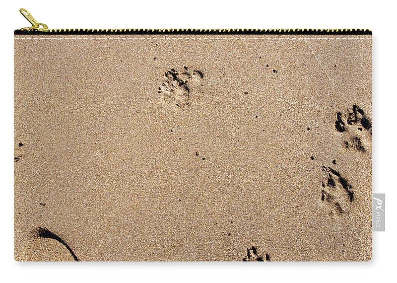 Sand Carry-all Pouch featuring the photograph Footprints Mans Best Friend by Glenn Gordon