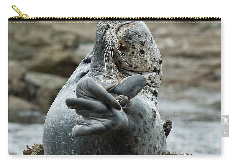 Seal Carry-all Pouch featuring the photograph Life Is Tough by Greg Nyquist