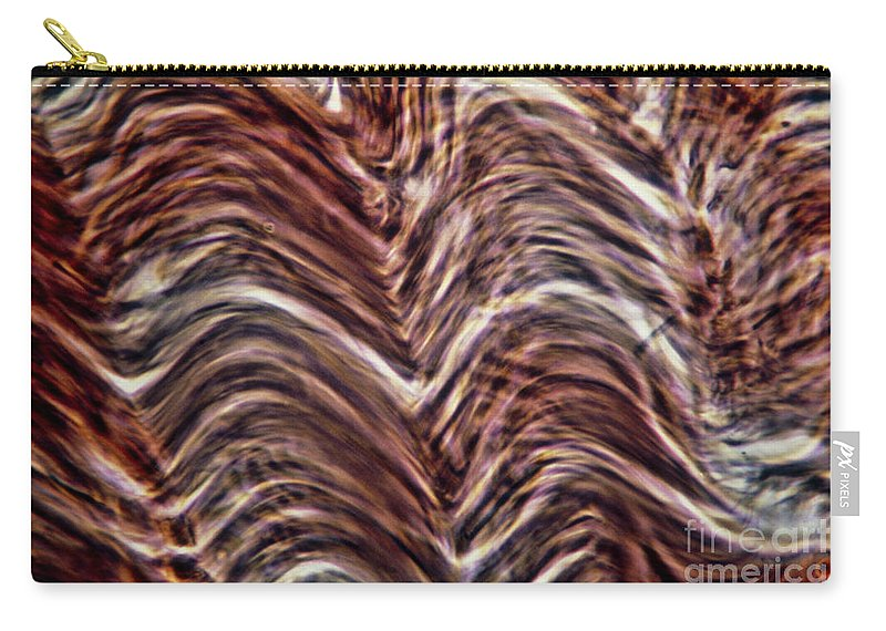 Human Body Carry-all Pouch featuring the photograph Light Micrograph Of Smooth Muscle Tissue by Eric Grave