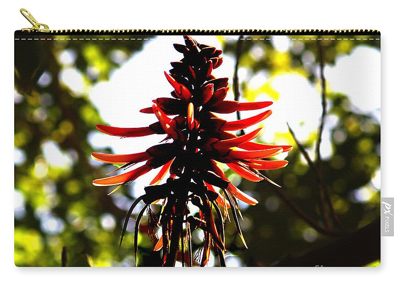 Fine Art Print Carry-all Pouch featuring the photograph Light Play IIi by Patricia Griffin Brett