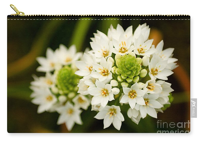 Flower Carry-all Pouch featuring the photograph Like An Angel by Syed Aqueel