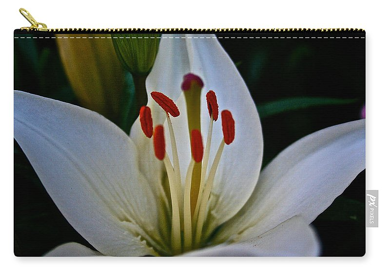 Outdoors Carry-all Pouch featuring the photograph Lilly White by Susan Herber