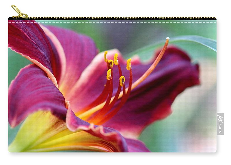 Prints Carry-all Pouch featuring the photograph Lily - Hardy by Travis Truelove