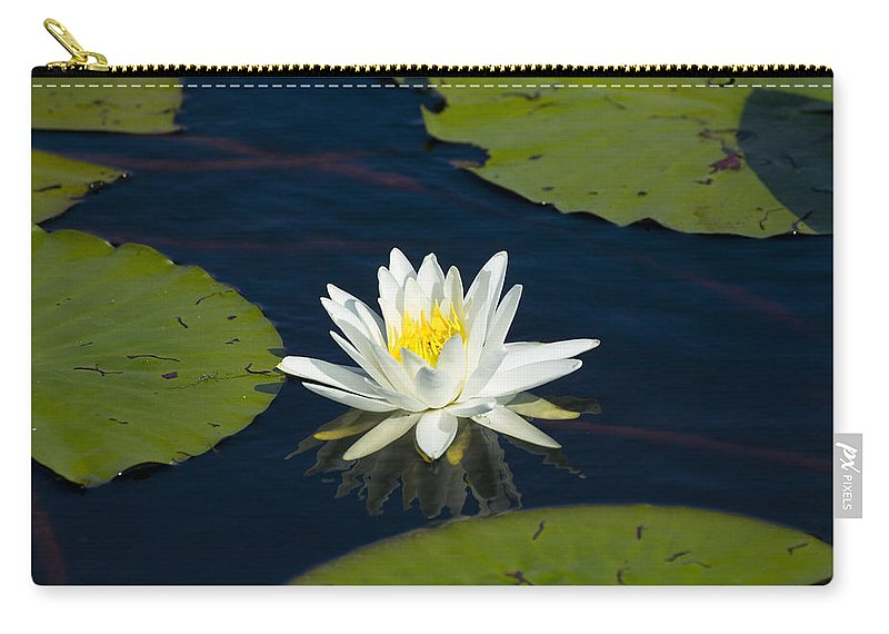 Lily Pad Carry-all Pouch featuring the photograph Lily Pad And Flower by Rich Franco