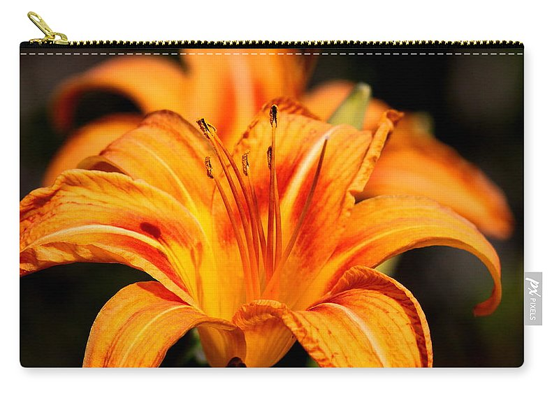 Prints Carry-all Pouch featuring the photograph Lily by Travis Truelove
