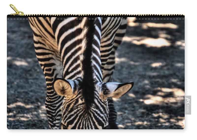 Carry-all Pouch featuring the photograph Lines       Zebra by Michael Frank Jr