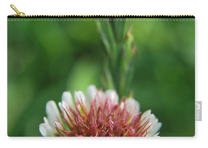 Yhun Suarez Carry-all Pouch featuring the photograph Little Flower by Yhun Suarez