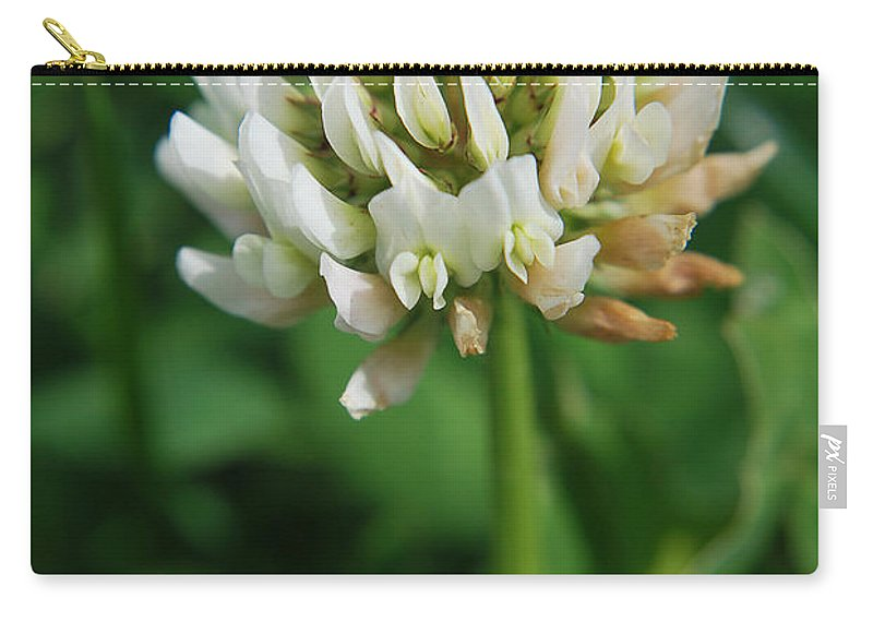 Yhun Suarez Carry-all Pouch featuring the photograph Little White Flower by Yhun Suarez