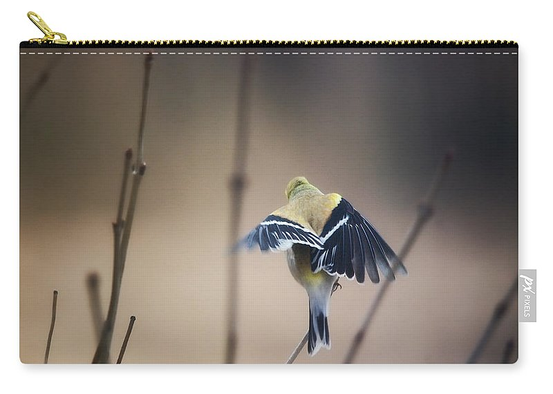 Birds Carry-all Pouch featuring the photograph Little Wings by Susan Capuano