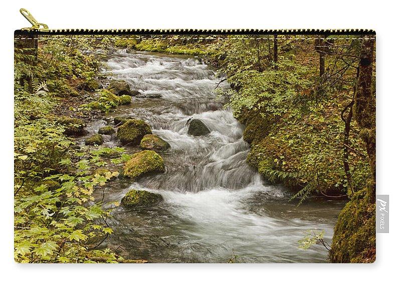 Little Zig Zag Stream Carry-all Pouch featuring the photograph Little Zig Zag Stream by Wes and Dotty Weber