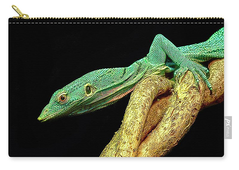 Lizard Carry-all Pouch featuring the photograph Lizard by Dave Mills