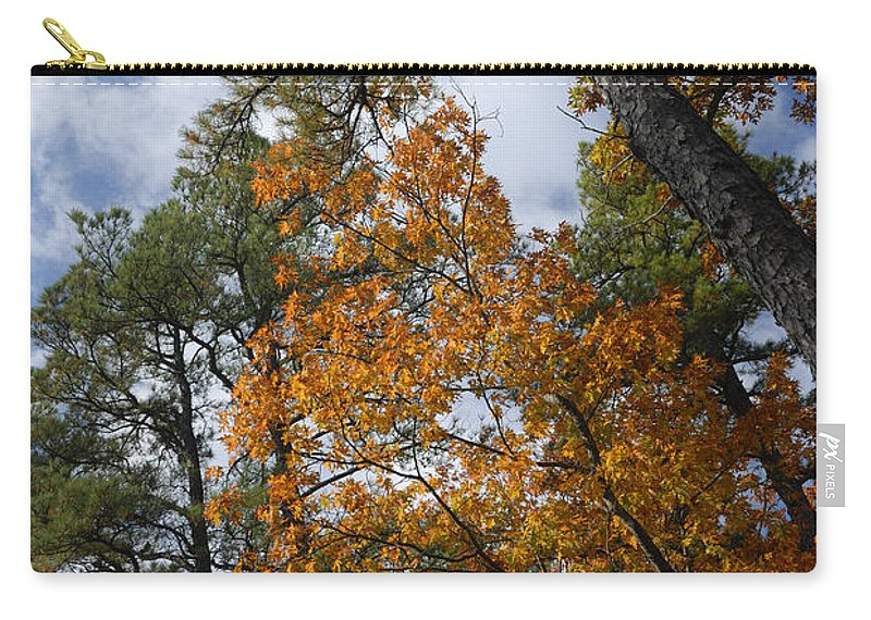 Autumn Foliage Carry-all Pouch featuring the photograph Lofty by Betty LaRue