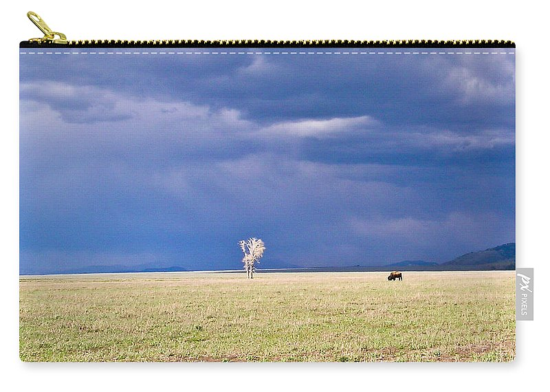 Lone Carry-all Pouch featuring the photograph Lone Buffalo 2 by Douglas Barnett