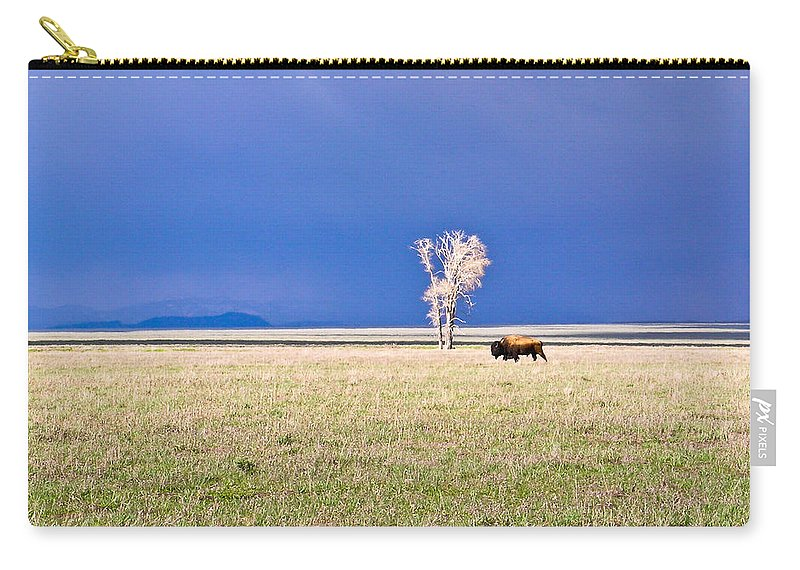 Lone Carry-all Pouch featuring the photograph Lone Buffalo 3 by Douglas Barnett