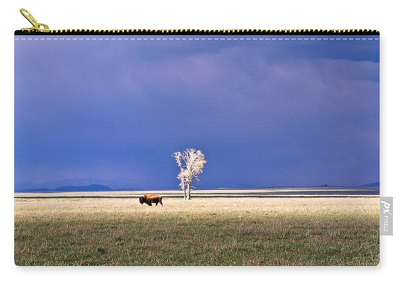 Lone Carry-all Pouch featuring the photograph Lone Buffalo 4 by Douglas Barnett