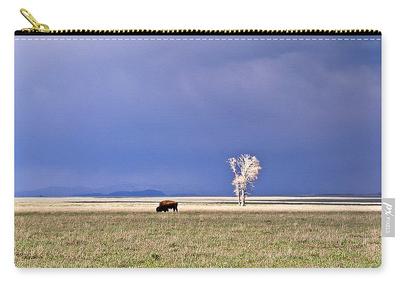 Lone Carry-all Pouch featuring the photograph Lone Buffalo 5 by Douglas Barnett