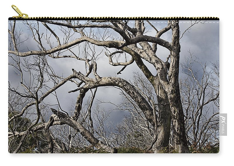 Dead Tree Carry-all Pouch featuring the photograph Lone Tree by Douglas Barnard