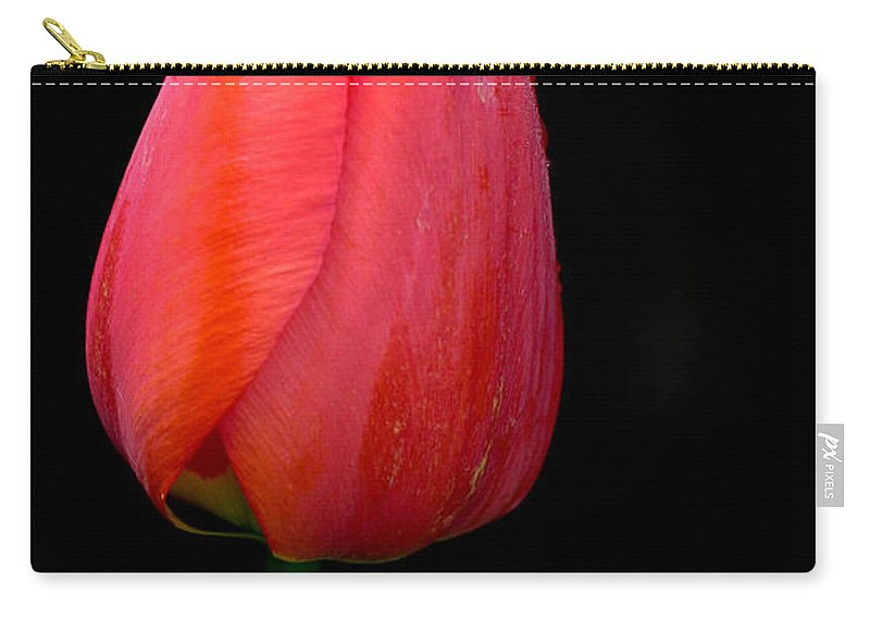 Flower Carry-all Pouch featuring the photograph Lonely Tulip by Jean Noren