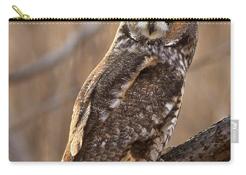 Animal Carry-all Pouch featuring the photograph Long-eared Owl by Mircea Costina Photography
