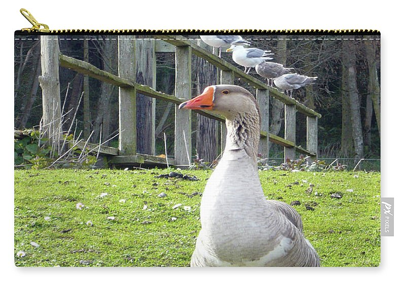 Animals Carry-all Pouch featuring the photograph Lookin South by Lauren Leigh Hunter Fine Art Photography