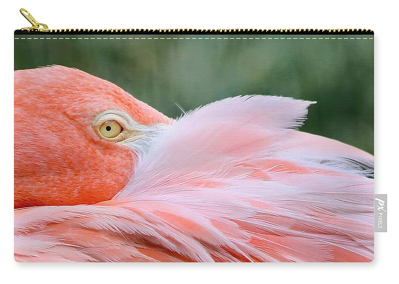 Pink Flamingo Carry-all Pouch featuring the photograph Looking At You by Kim Hojnacki