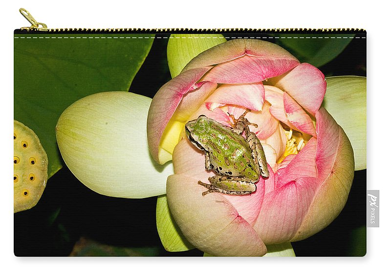 Amphibians Carry-all Pouch featuring the photograph Lotus And Frog by Jean Noren