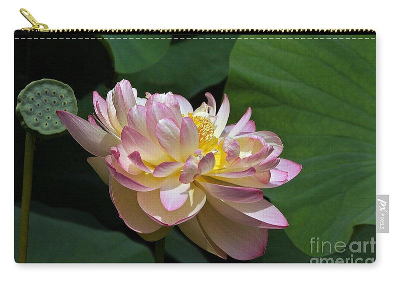 Lotus Flower And Seed Pod And Leaves Carry All Pouch For Sale By