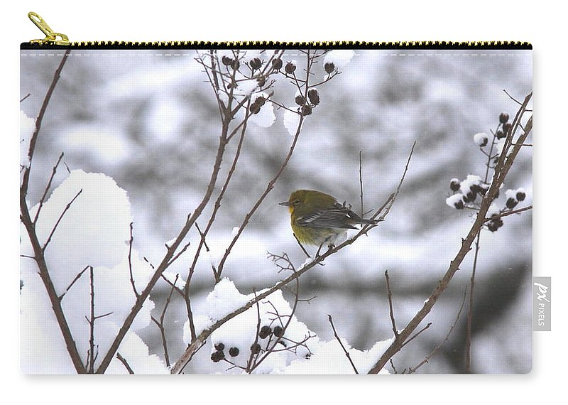 Pine Warbler Carry-all Pouch featuring the photograph Love Some Sun by Travis Truelove