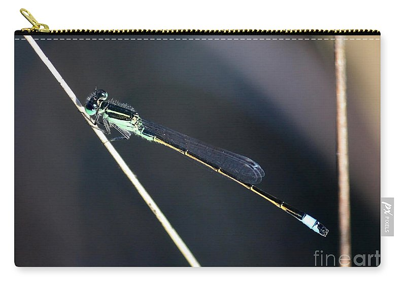 Damselfly Carry-all Pouch featuring the photograph Lovely Damselfly by Carol Groenen