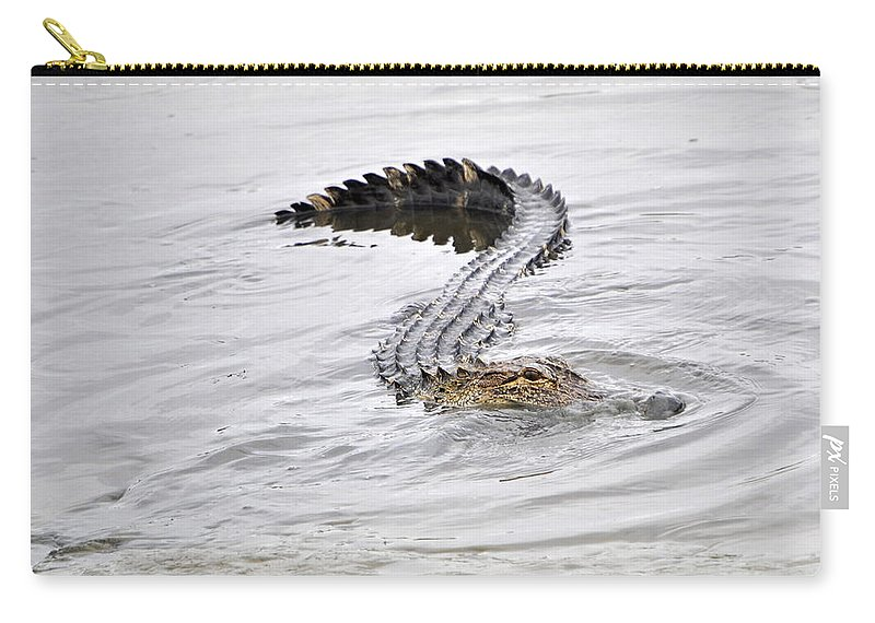 Alligator Print Carry-all Pouch featuring the photograph Low Country Marsh Alligator by Deborah M Rinaldi