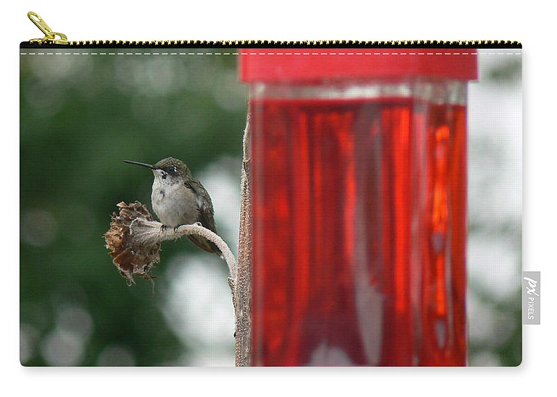 Hummer Carry-all Pouch featuring the photograph Lunch Break by Ericamaxine Price