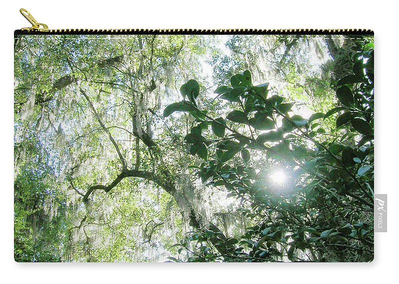 Swamp Carry-all Pouch featuring the digital art Magnolia Plantation Sc by Lizi Beard-Ward