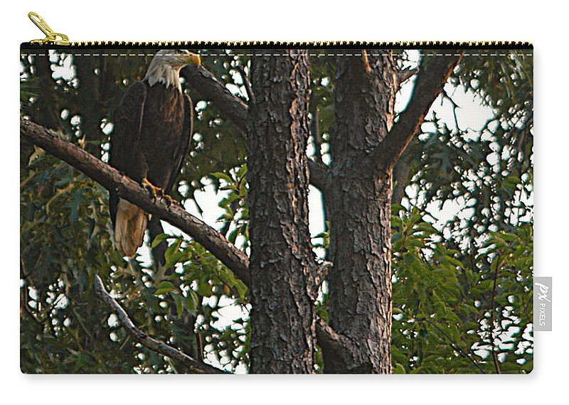 All Rights Reserved Carry-all Pouch featuring the photograph Majestic Bald Eagle by Clayton Bruster
