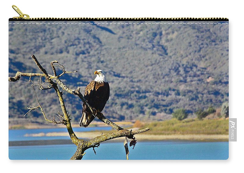 Birds Carry-all Pouch featuring the photograph Majestic Eagle by Diana Hatcher