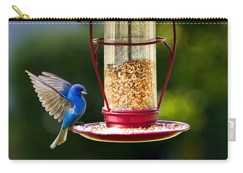 Indigo Bunting Carry-all Pouch featuring the photograph Male Indigo Bunting by Linda Tiepelman