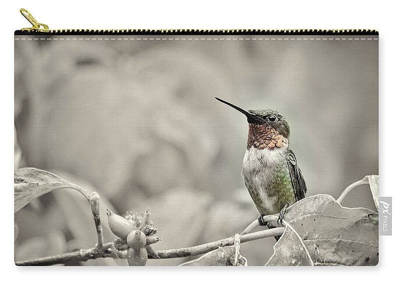 K-30 Carry-all Pouch featuring the photograph Male Ruby Throated Hummingbird by Lori Coleman