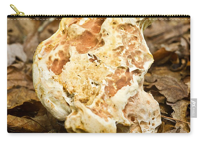 Mangled Carry-all Pouch featuring the photograph Mangled Fungus With Problems by Douglas Barnett